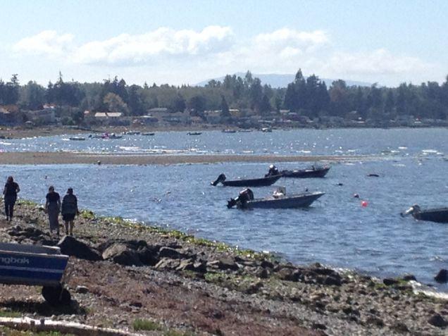 boats on Birch Bay