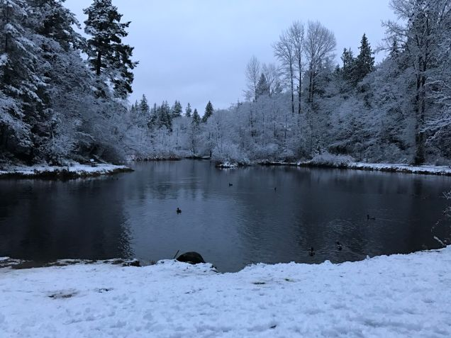 Derby Pond, Whatcom Falls Park